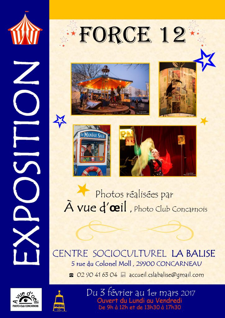 affiche-expo-force-12
